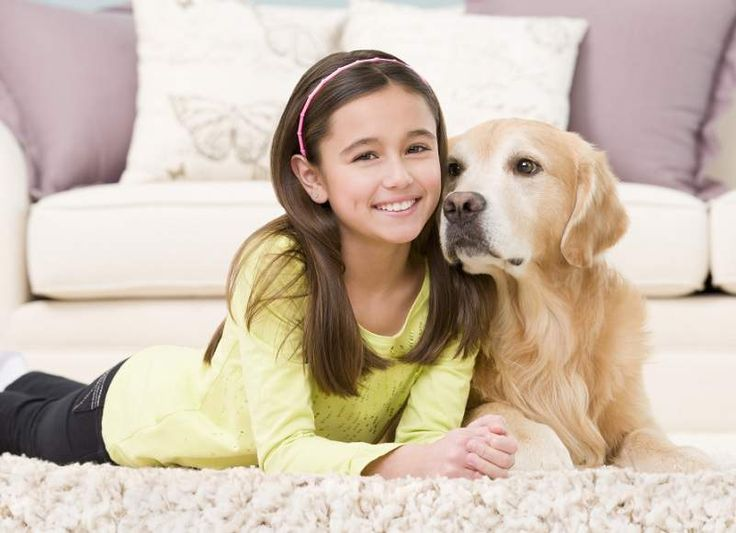 Important things to remember while hiring carpet cleaning firms