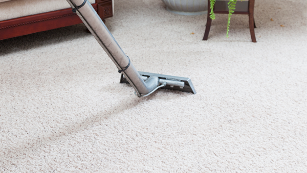 Consider Main Components of Carpet Cleaning in Mill Park