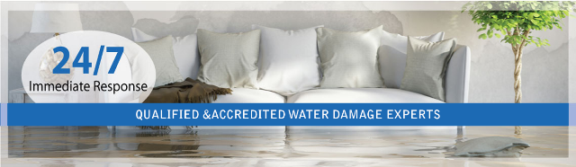 Why is it Essential to Get Wet Carpet Services in Melbourne