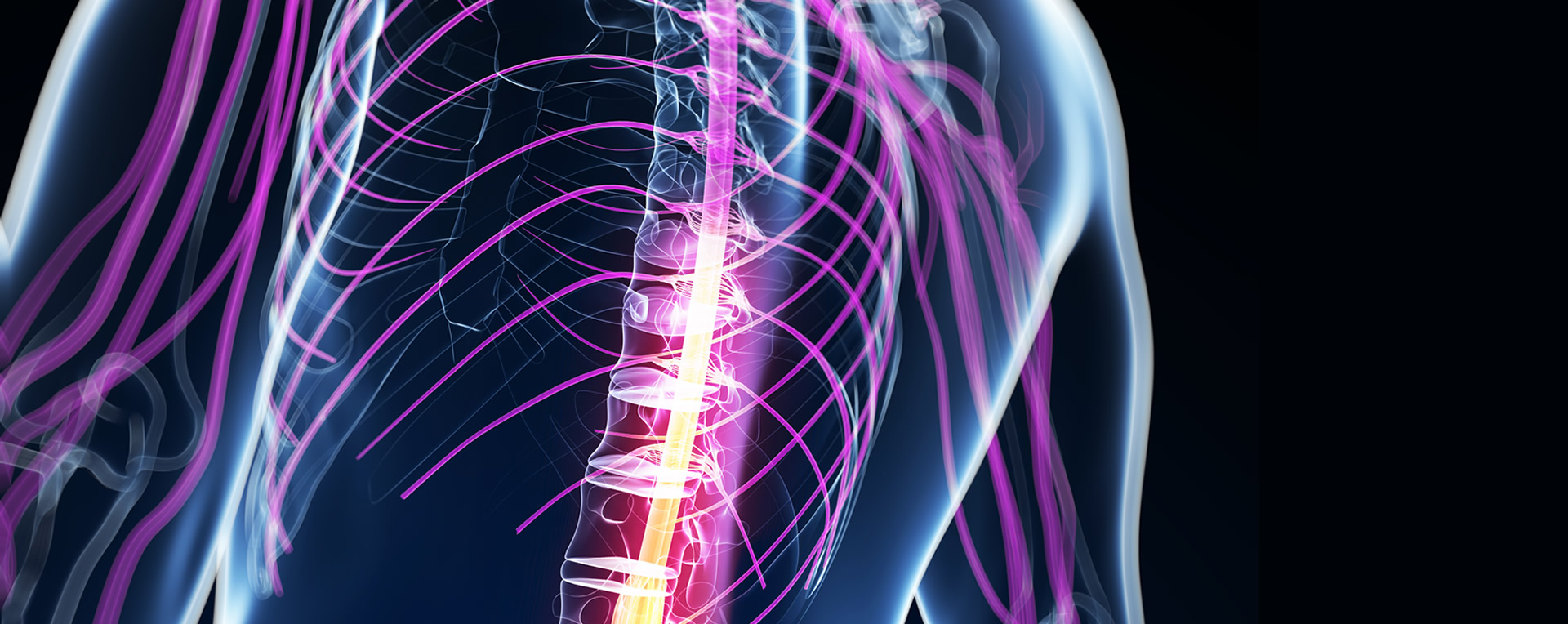 Get Rid Of Body Pains Consulting A Chiropractor