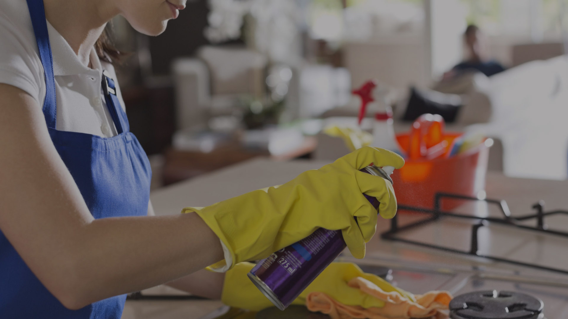 What kind of services is offered by end of lease cleaning Adelaide professionals?