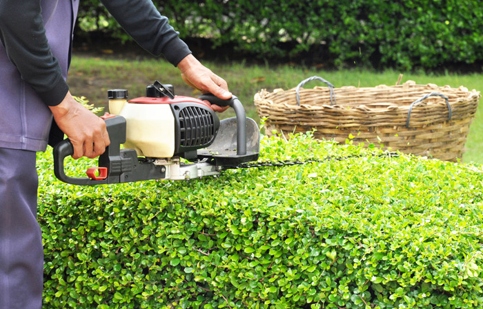 Did You Know The Importance Of Garden Lawn Maintenance Services?