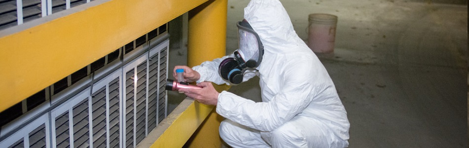 Why you should have asbestos testing in first priority?