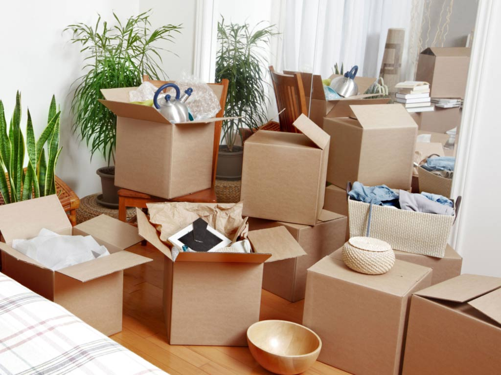 Why Should You Hire The Proper Furniture Removalist?