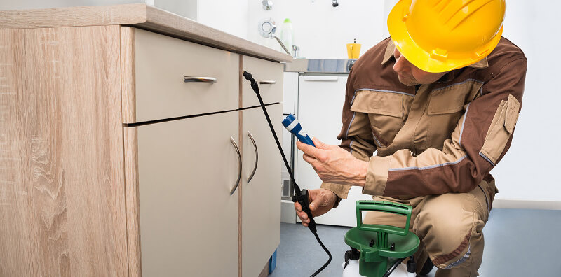 Different methods to have the pest Control Adelaide