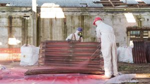 Is asbestos removal important?