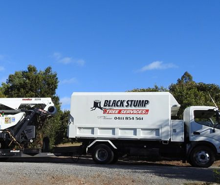 Black Stump Tree Services – Tree Removal Adelaide Hills