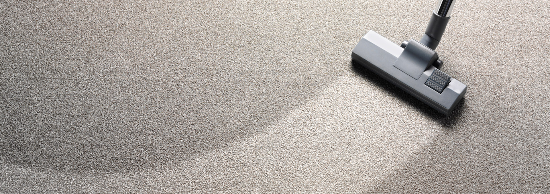 Keeping Carpet Clean Is Affordable now in Adelaide