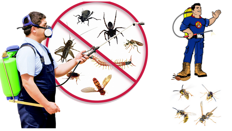 What are the conventional methods for pest control solution?
