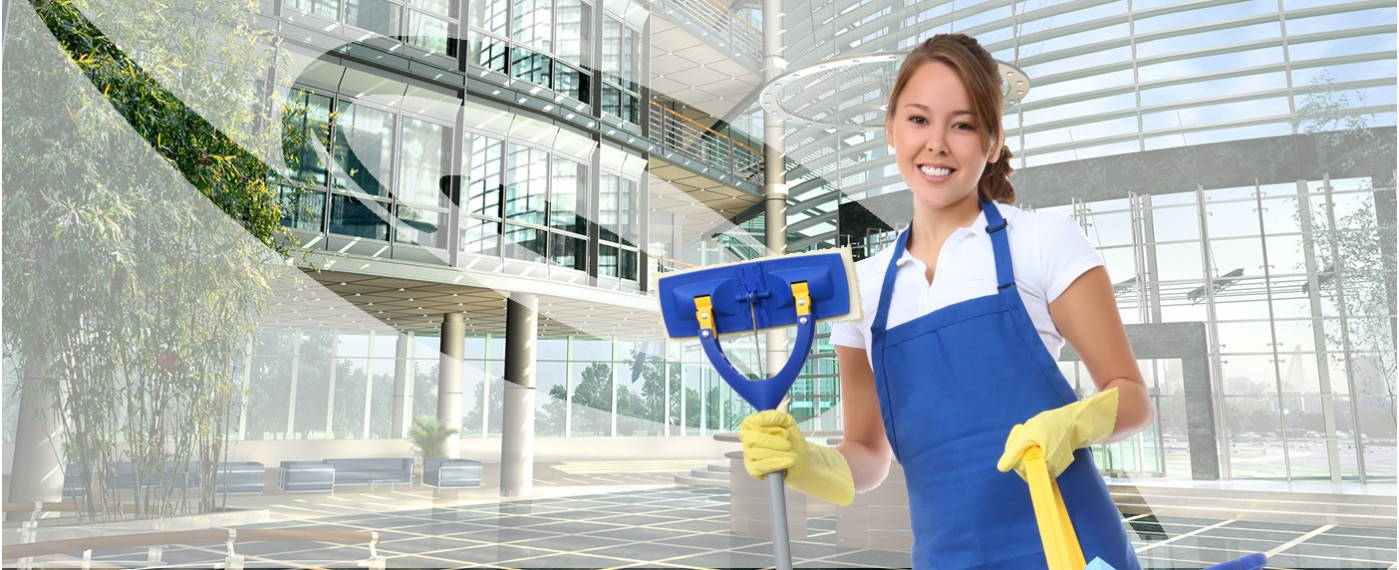 Why Should I Seek Professional Cleaning Services Adelaide?