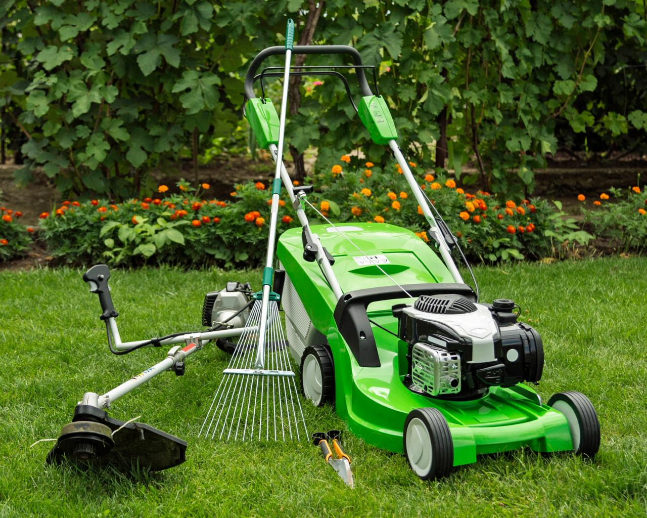 A Step-by-step Guide To Garden Maintenance Melbourne & Improvement