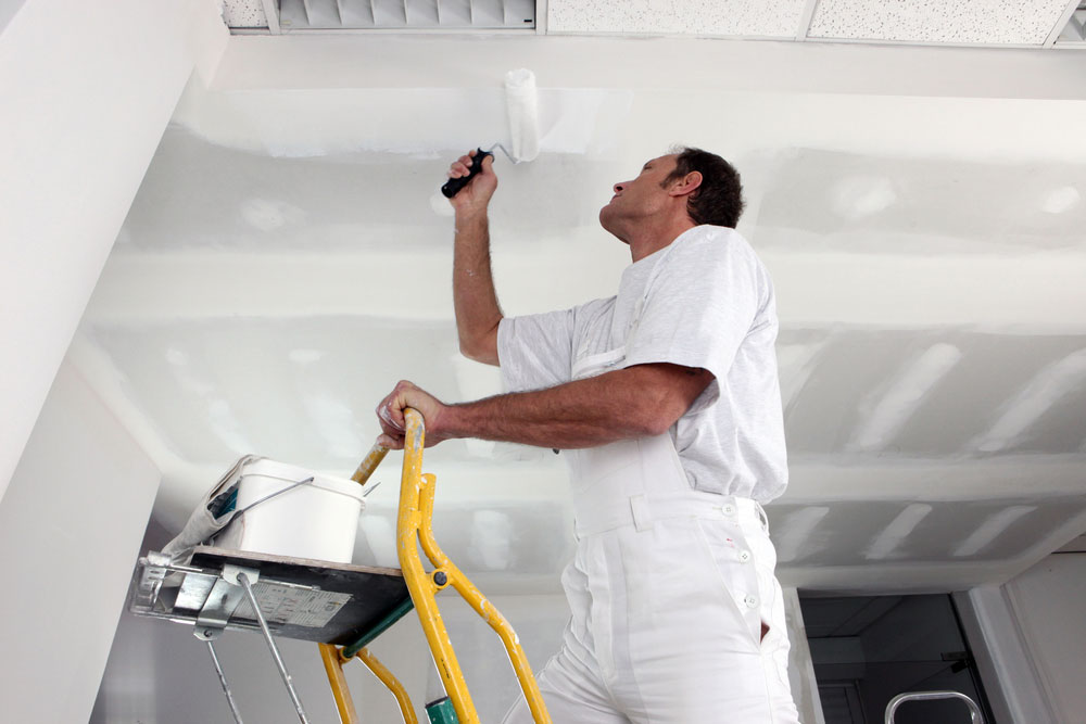 Everything You Need To Know About Painters Sydney