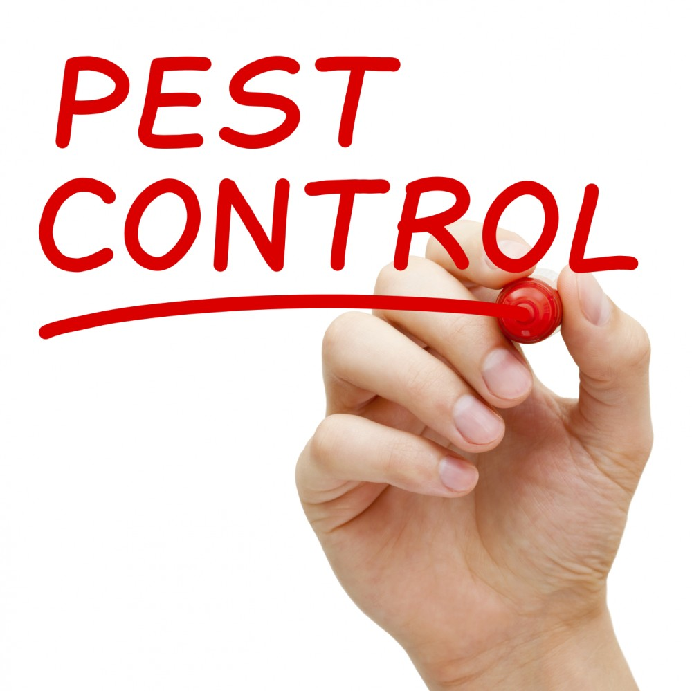 What is the importance of hiring the right commercial pest control service?