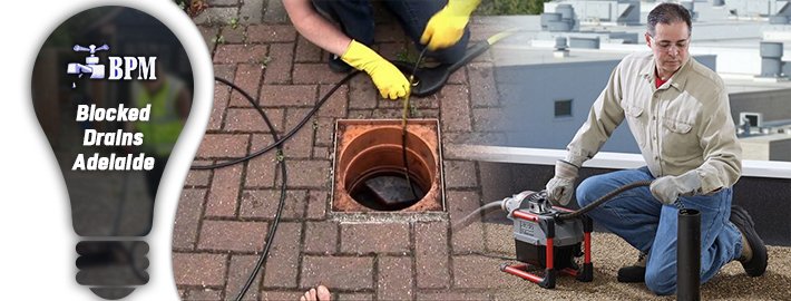 Blocked Drain Adelaide – Professional Attention as Safety Step for Property