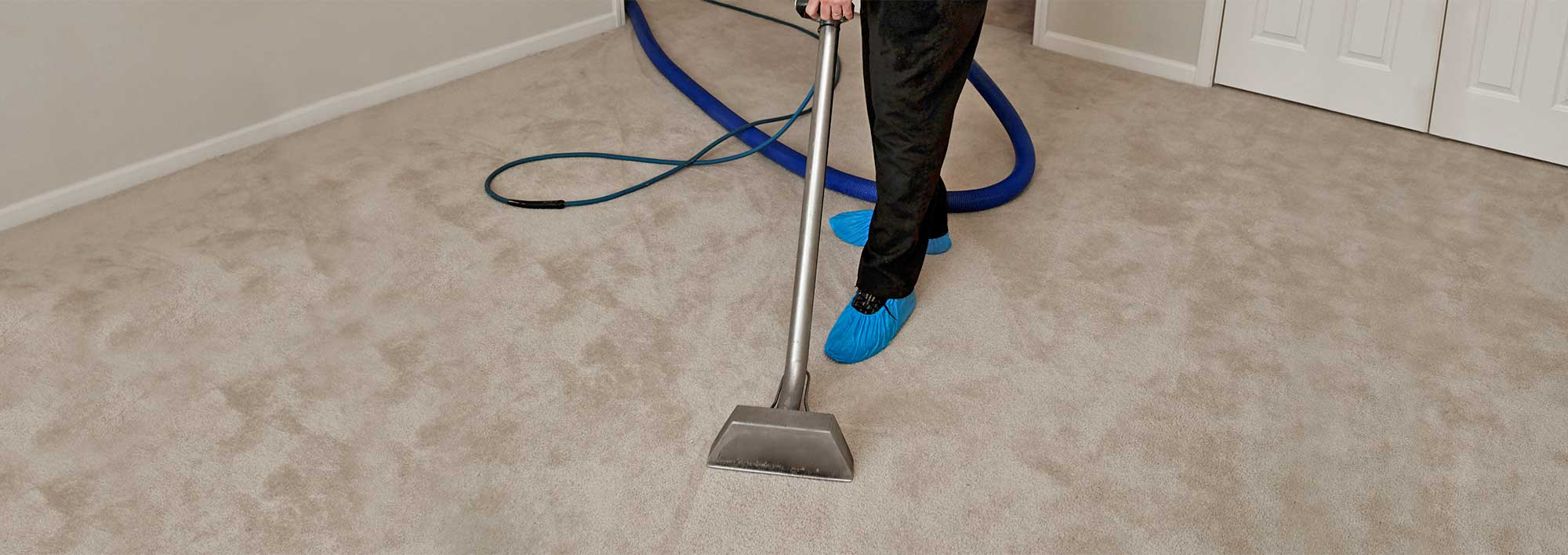 Different carpet cleaning methods used by professional carpet cleaners Adelaide