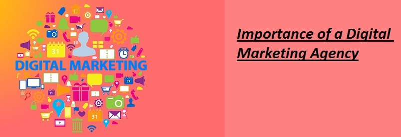 What is the Importance of a Digital Marketing Agency