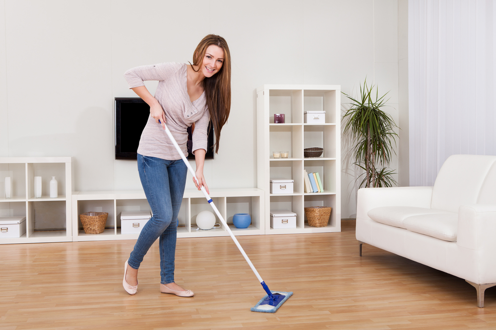 What is the Difference between Daily Cleaning and Vacate Cleaning