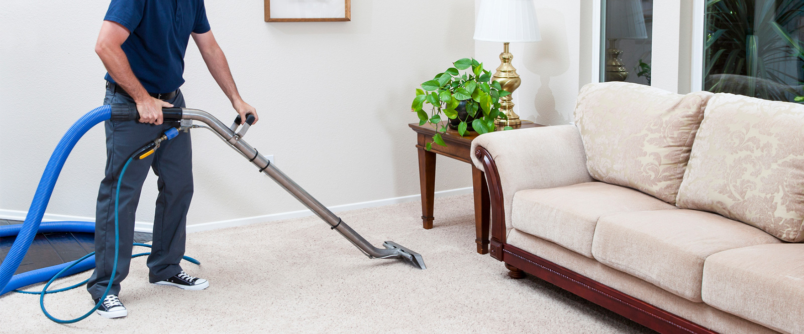 Importance of professional carpet cleaning service