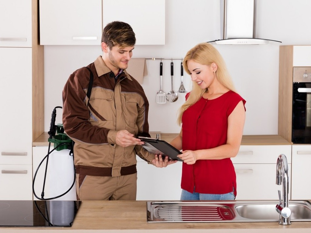 Everything You Should Know About Pest Control Services In House